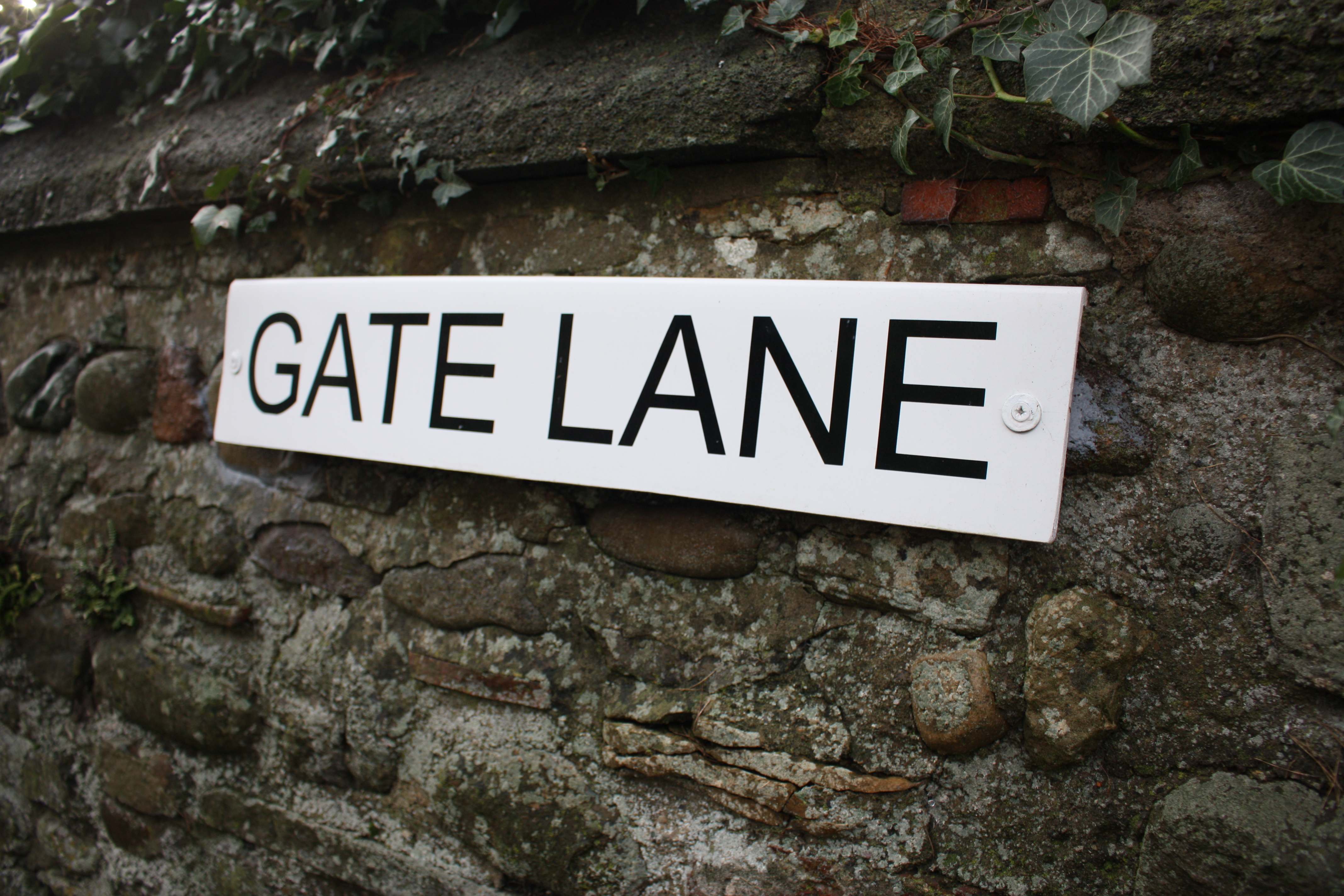 Gate Lane Low Coniscliffe