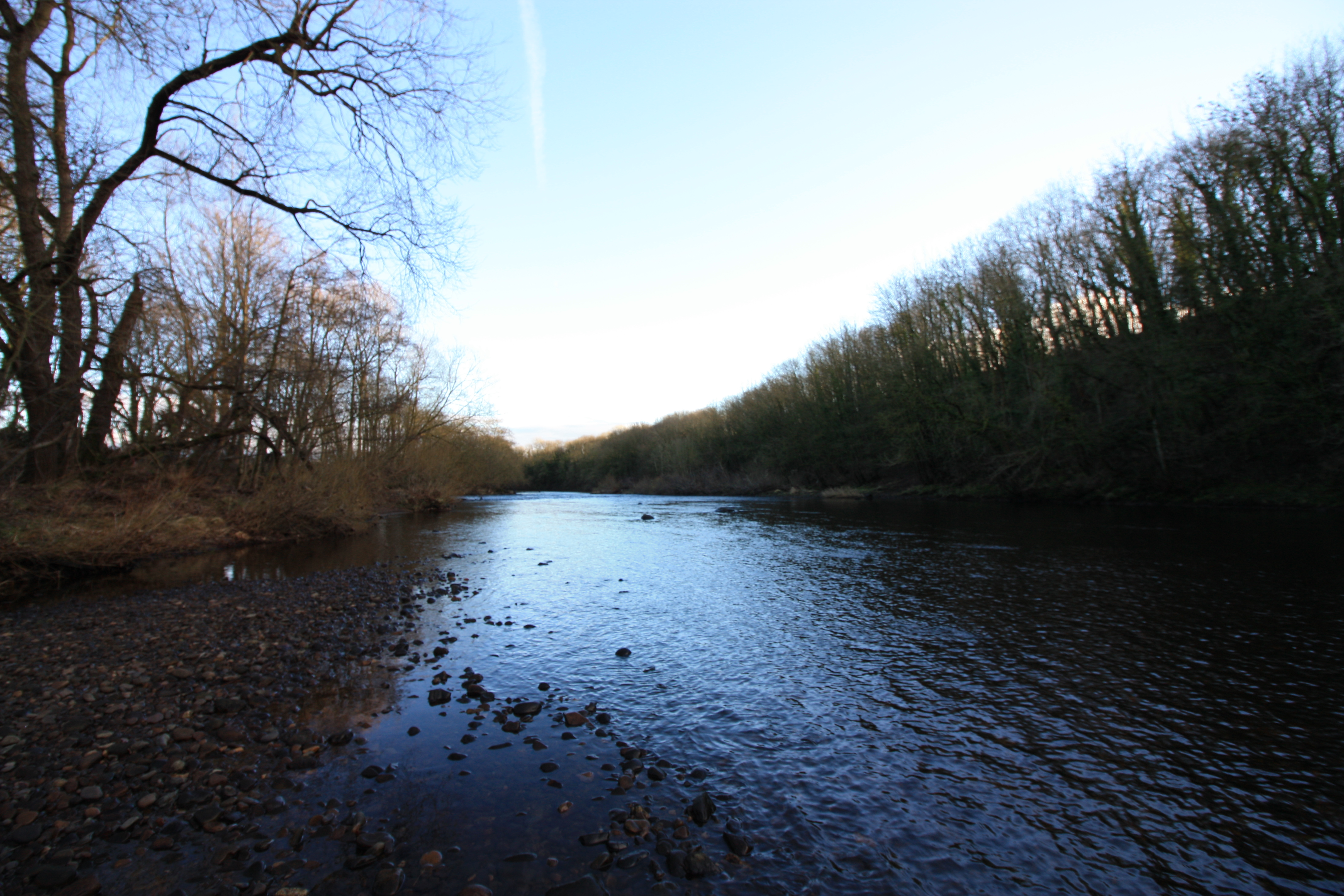 River Tees at Low Coniscliffe